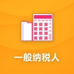 一般纳税人代理记账_深圳一般纳税人公司做账报税-开心投资